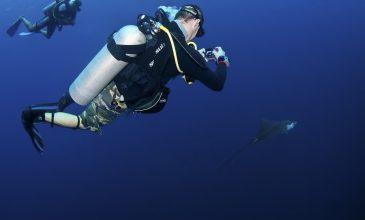 Wonders Under Water