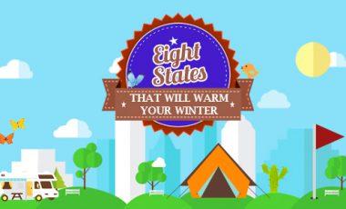Social Media 8 states