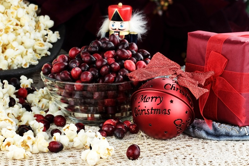 Old-Fashioned Popcorn Cranberry Christmas